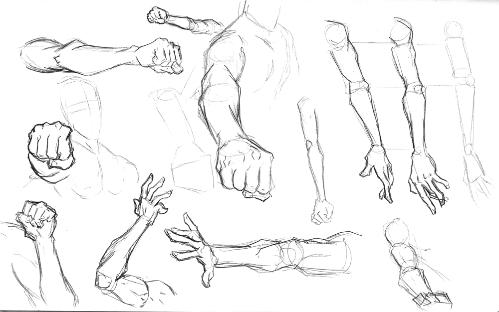 1000x626 Arm Anatomy Drawings Grabbing
