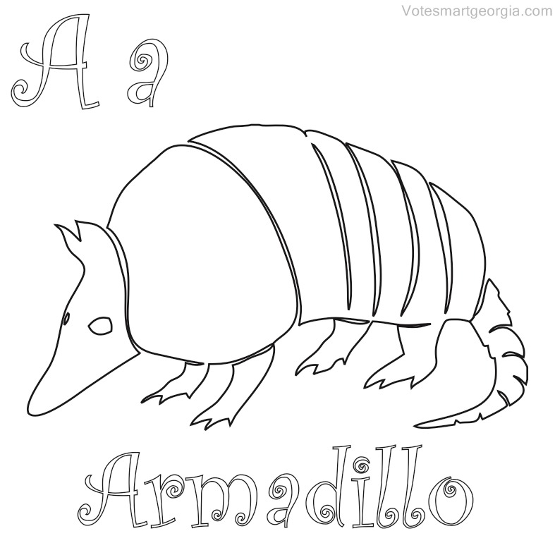 Armadillo Drawing At Getdrawings Com Free For Personal Use