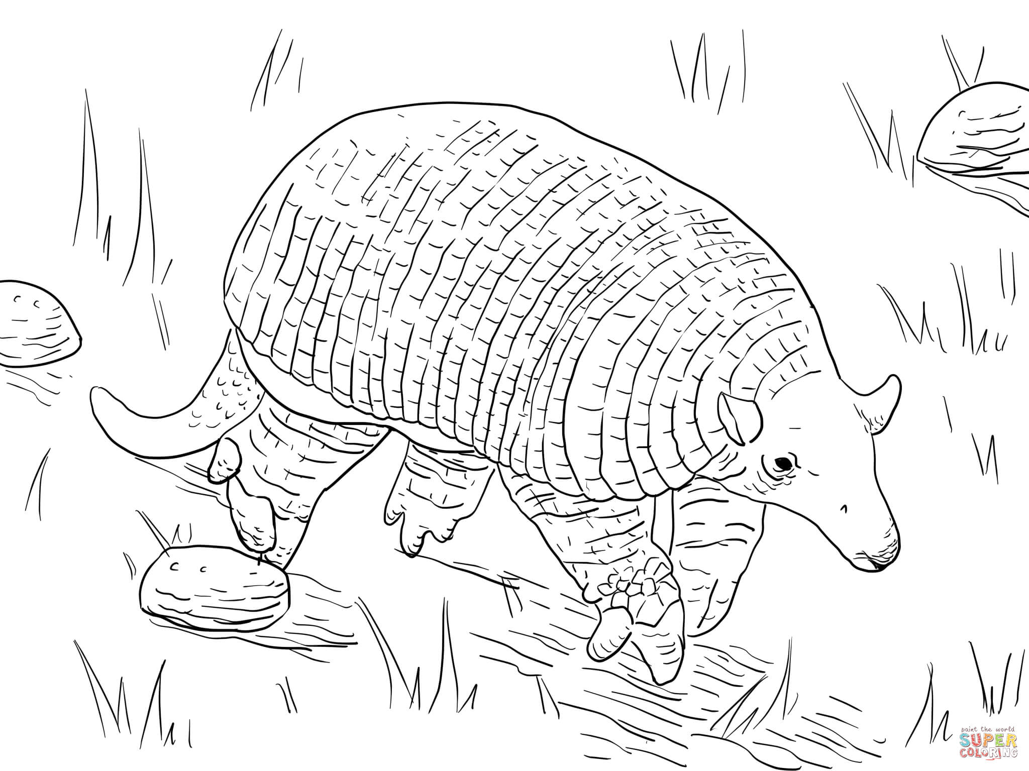 2048x1535 Giant Armadillo Coloring Page Free Printable Coloring Pages