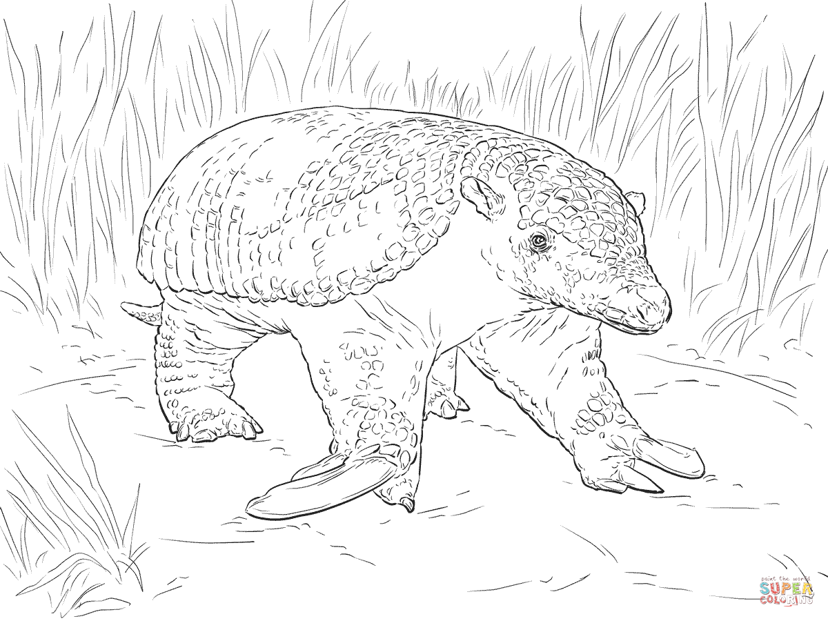 1200x900 Realistic Giant Armadillo Coloring Page Free Printable Coloring