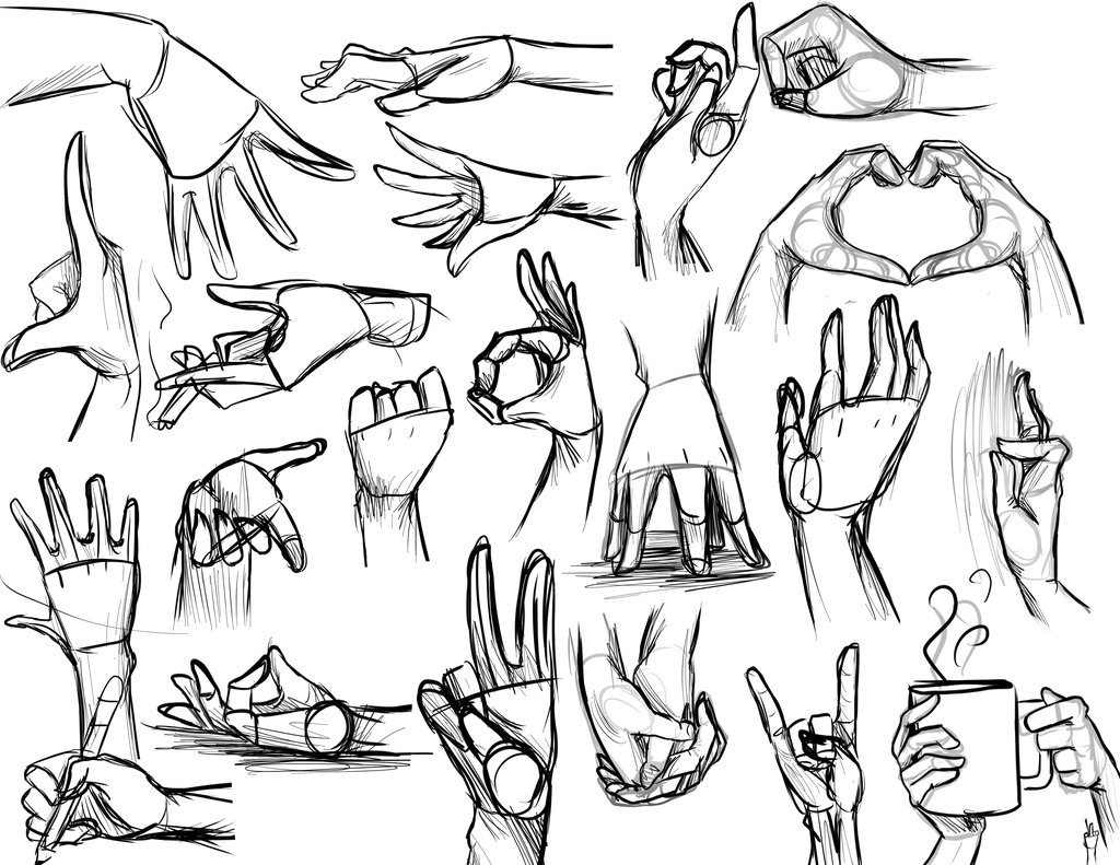 1024x791 Reference Photos For Drawing 169 Best Images About Drawing