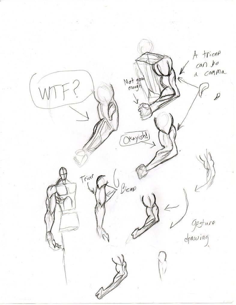 786x1017 Drawing The Arm By Freshbreath3
