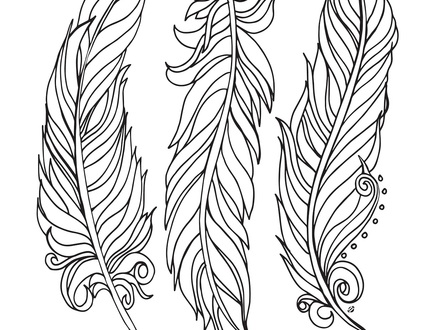 440x330 12 Feather Coloring Pages, Turkey Feather Coloring Page Coloring