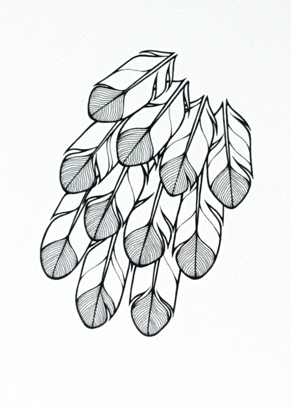 570x800 Stylised Feathers Illustration