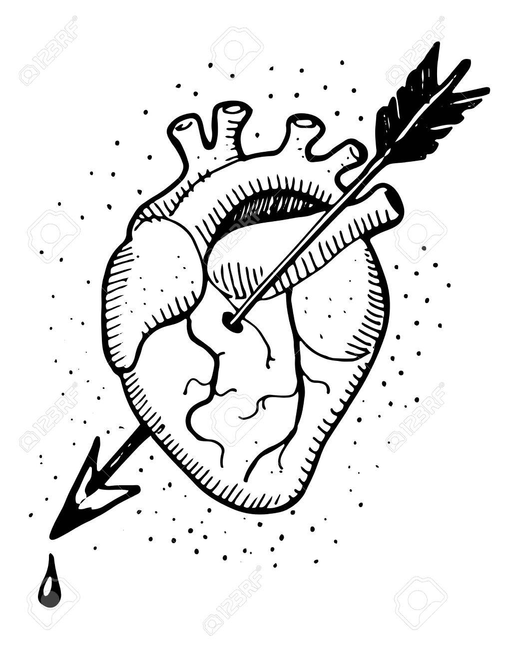 1039x1300 Hand Drawn Illustration Of A Human Heart With An Arrow Royalty