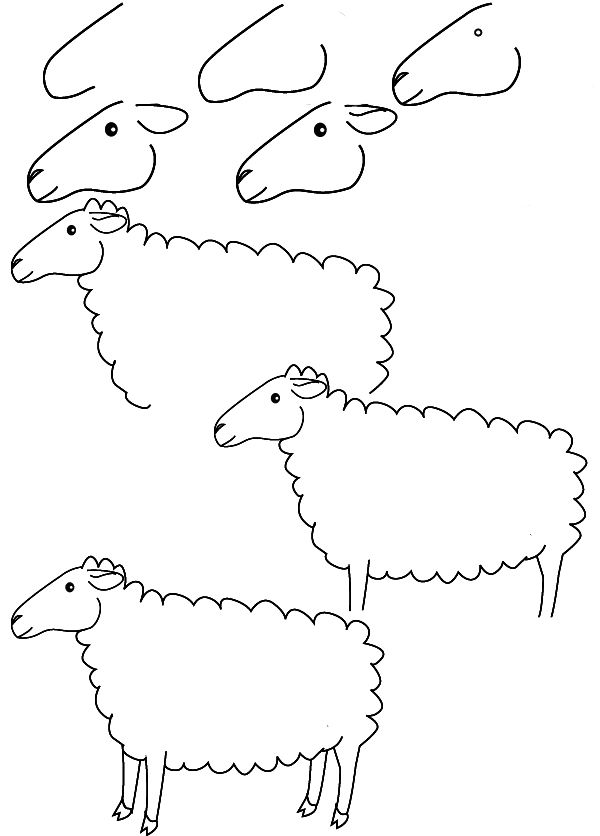600x836 How To Draw A Sheep Step By Step For Kids Drawing Sheep
