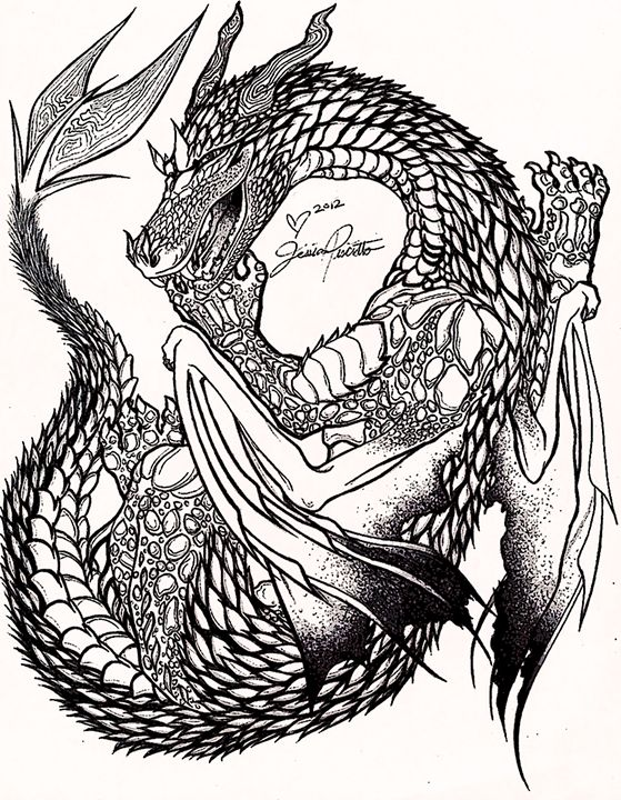 559x720 Dragon Stipple