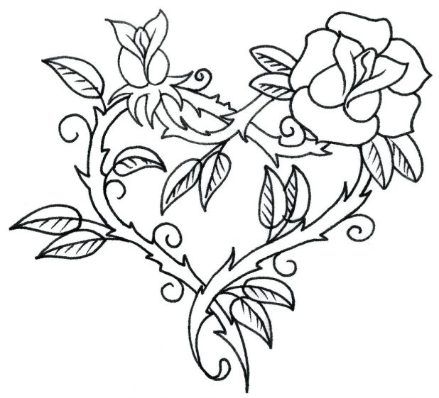 618x561 Outline Lotus Flower On White Background Stock Vector Flowers