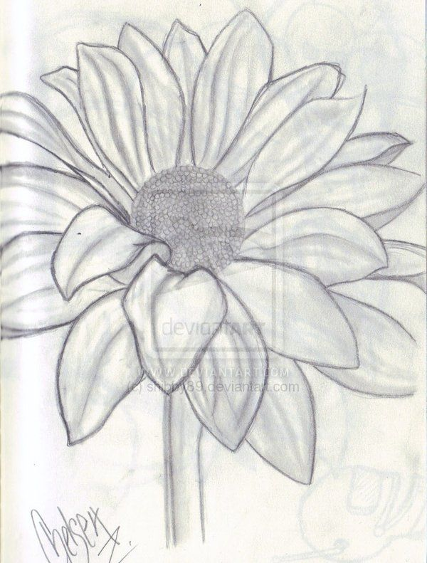 Artsy Flower Drawing