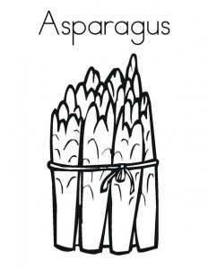 232x300 Asparagus Coloring Page Vegetable Coloring Pages