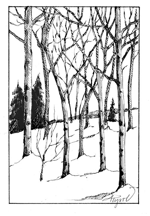 Aspen Drawing At Getdrawings Com Free For Personal Use Aspen