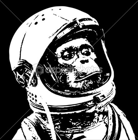442x449 Monkey Sister Sister Astronauts, Illustrations