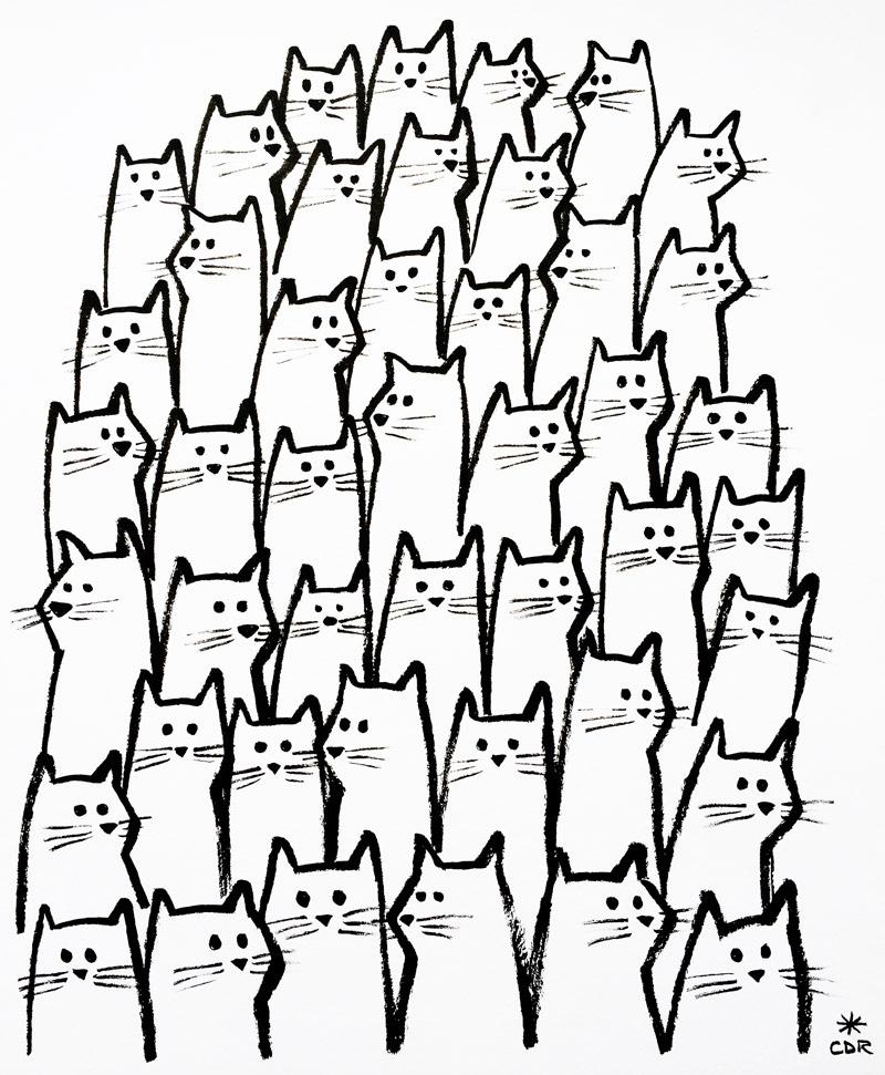 800x971 The Audience Christopher David Ryan Kitty Cat Klub