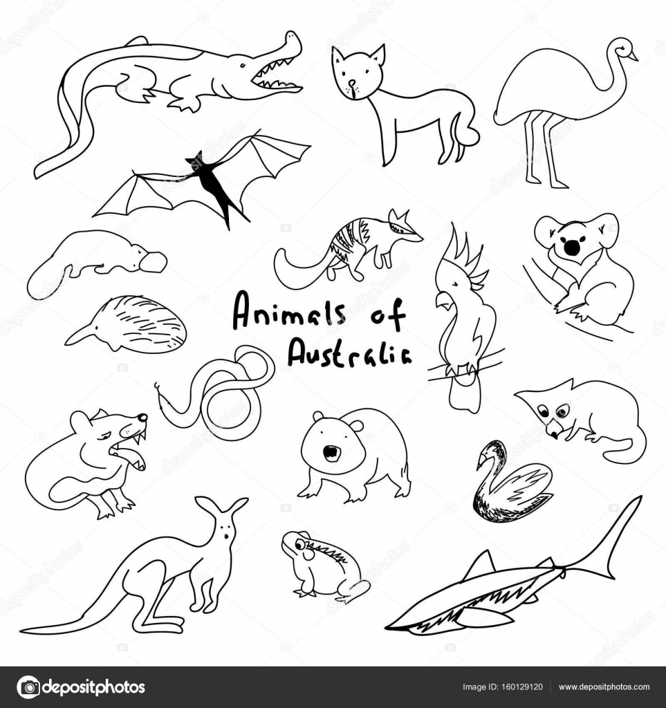 963x1024 Animals Of Australia (A Set Of Simple Drawings) Stock Vector