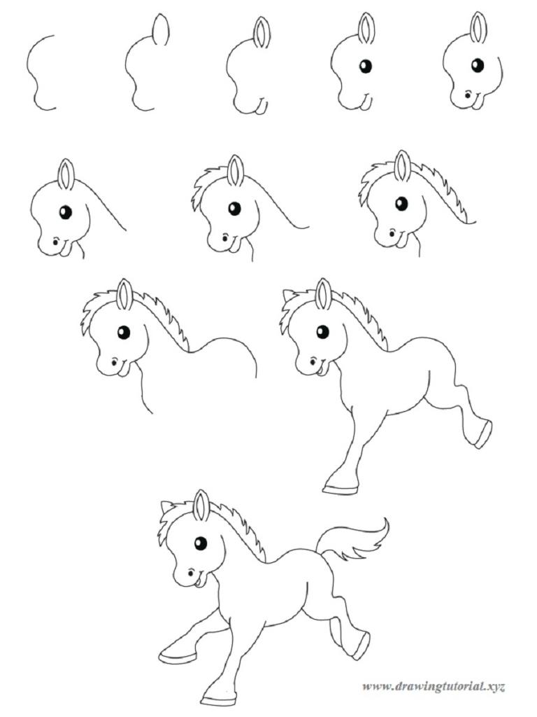 768x1024 How To Draw Australian Animals Step By Step