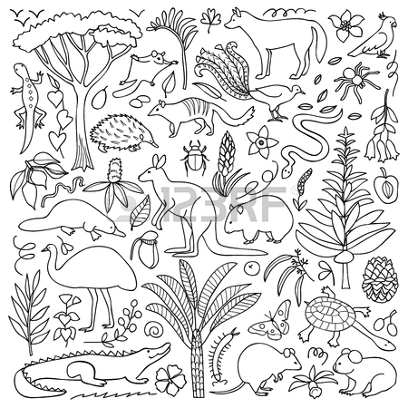 450x450 Illustration With Australian Animals And Plants Royalty Free