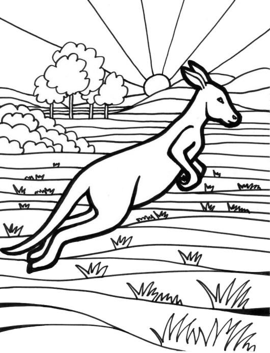 530x693 Australia Coloring Pages