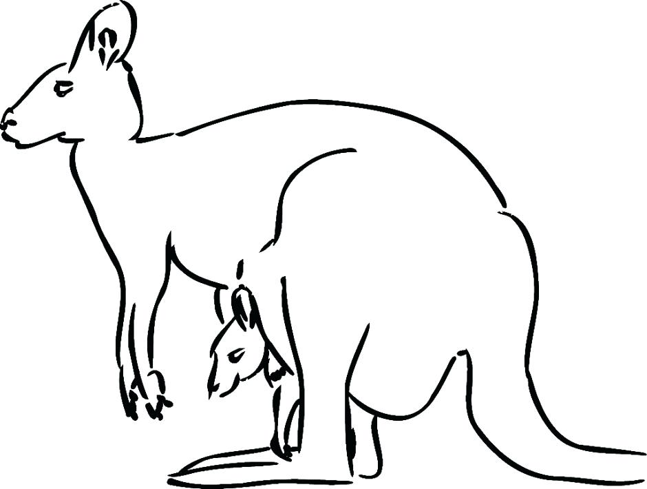 Australian Animals Drawing at GetDrawings.com | Free for personal ...