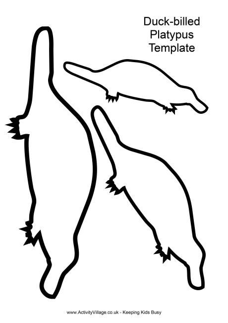 460x650 Australian Animal Templates