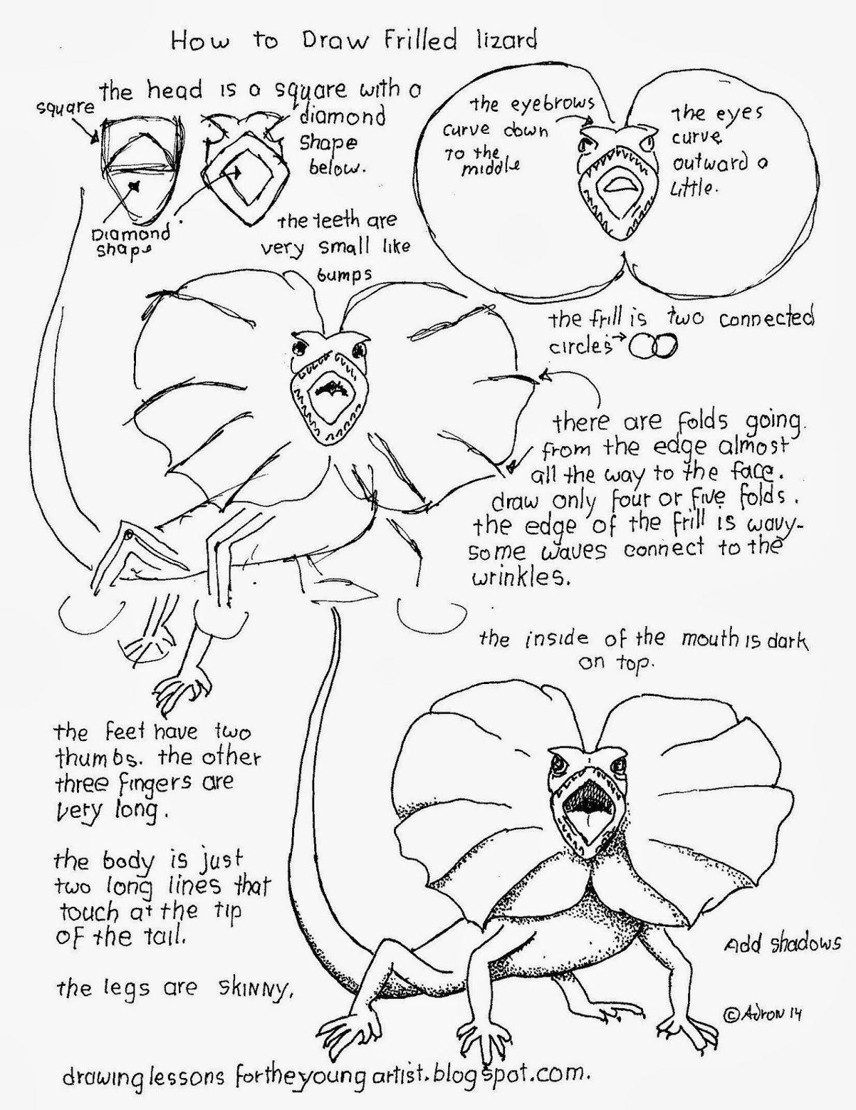 1234x1600 How To Draw An Australian Frilled Lizard. See More