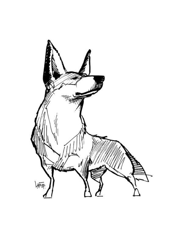 599x776 Australian Cattle Dog Gesture Sketch Art Print By John Lafree