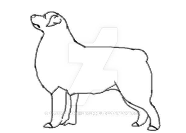 600x428 Australian Shepherd Lines2 By Australianshepkennel