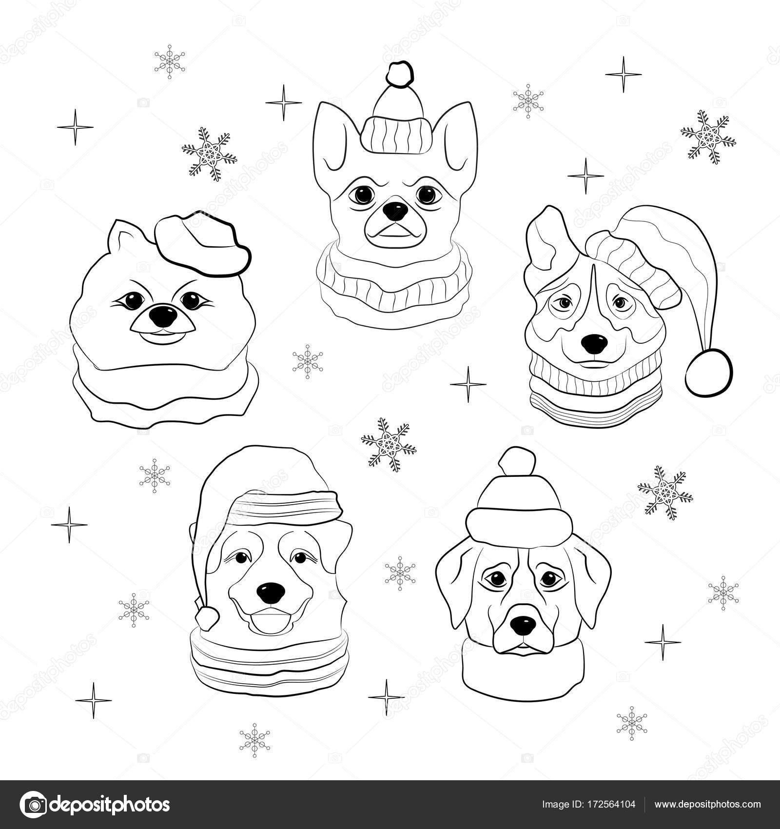 1600x1700 Head Of Dog In Winter Hat And Scarf On Snowflakes Background. Set