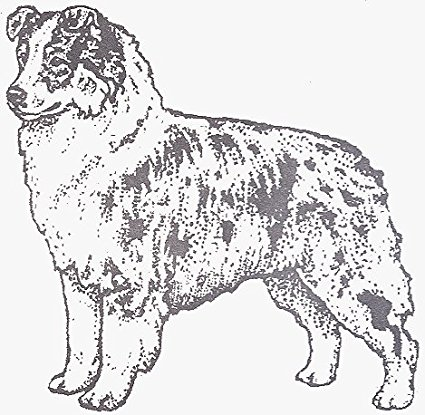 425x415 Dog Rubber Stamp