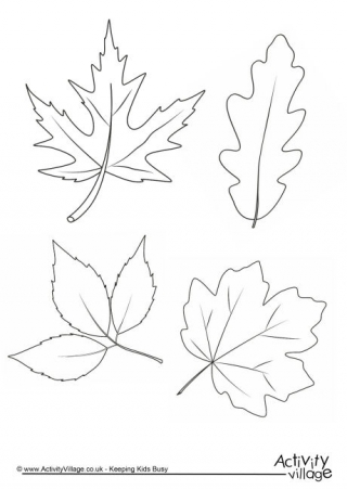 320x452 Autumn Leaves Colouring Page Coloring Pages Autumn