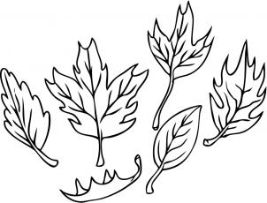 302x230 How To Draw How To Draw Leaves