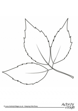 320x452 Autumn Colouring Pages
