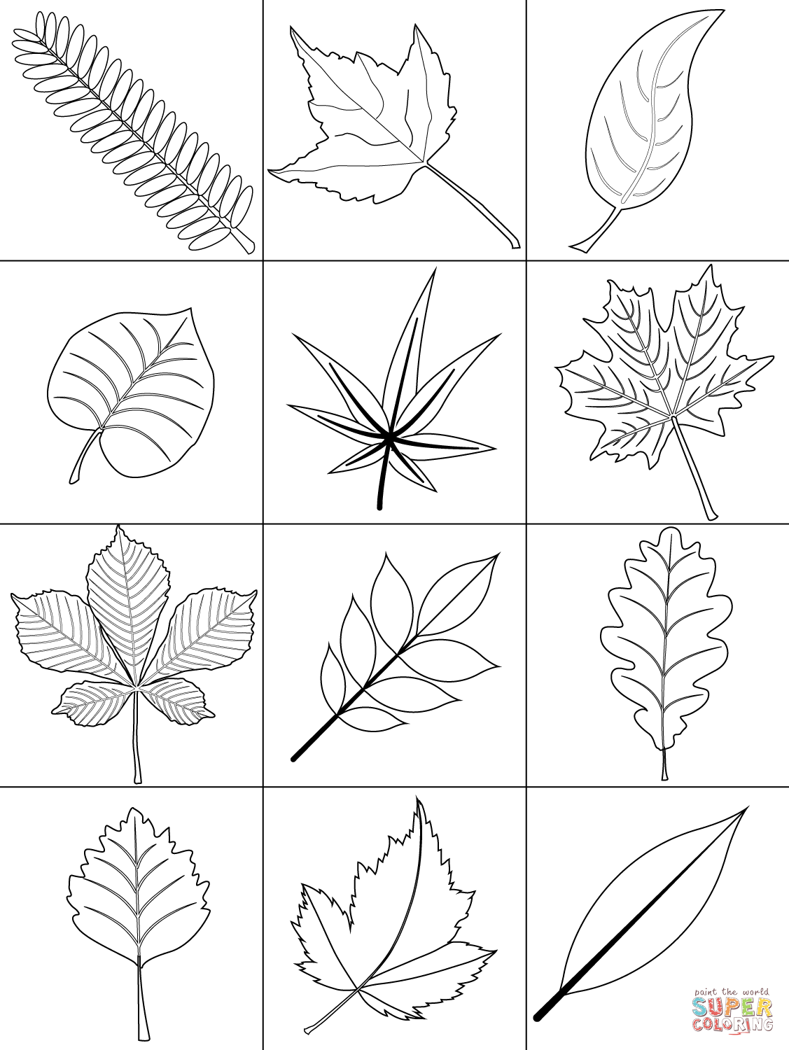 1127x1500 Autumn Leaves Coloring Page Free Printable Coloring Pages