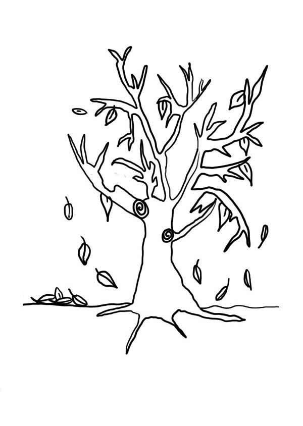Autumn Leaves Drawing at GetDrawingscom Free for personal use