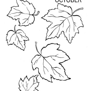 300x300 Drawing Autumn Leaves Coloring Pages Drawing Autumn Leaves