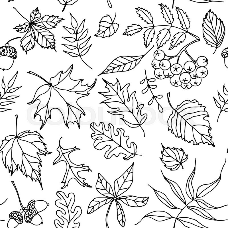 800x800 This Seamless Pattern Of Blacknd Whiteutumn Leaves Will Make