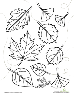301x377 Autumn Leaves Coloring Page Worksheet