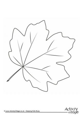 Autumn Tree Drawing