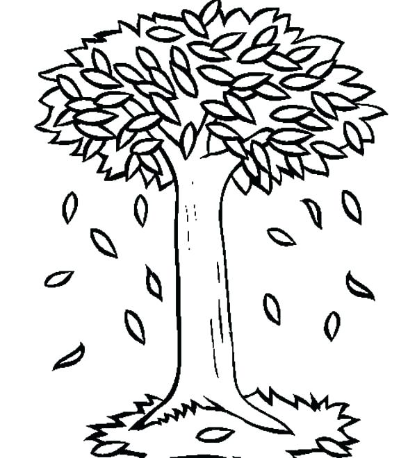 autumn tree coloring pages - photo#17