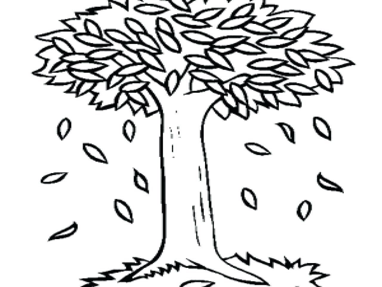 Autumn Trees Drawing at GetDrawings.com | Free for personal use ...