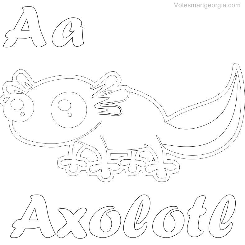 788x787 Axolotl Coloring Page