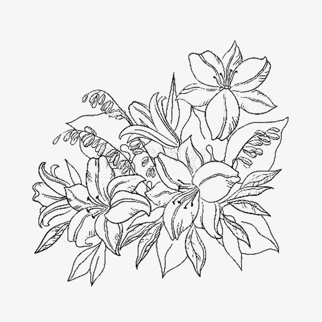 650x650 Azaleas, Jane Black Pen, Chinese Style, The Beauty Png Image