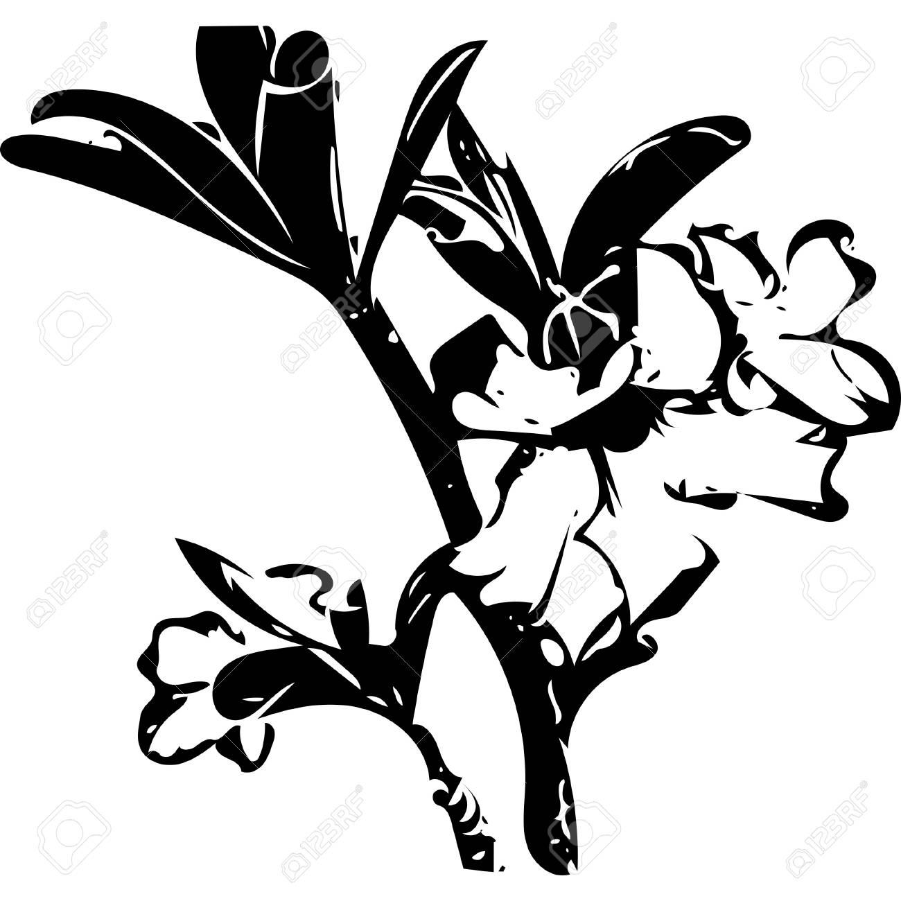 1300x1300 Black And White Lines Azalea Flowers Banque D'Images Et Photos