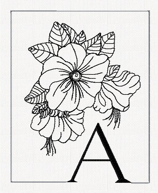 513x625 Flower Abc Htm