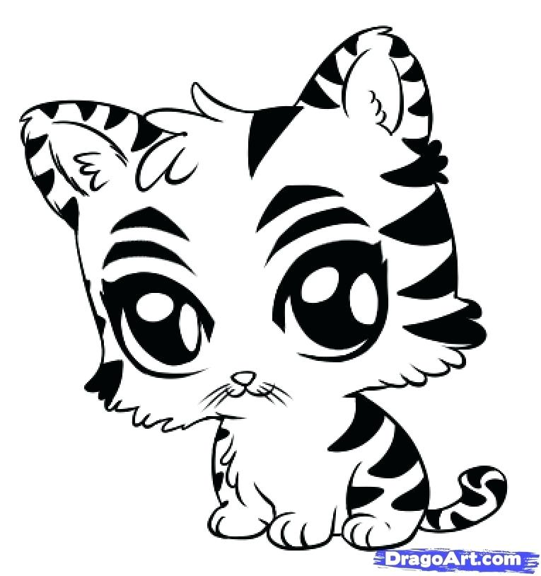 765x814 Coloring Pages Of Baby Animals How To Draw A Cute Tiger Step By