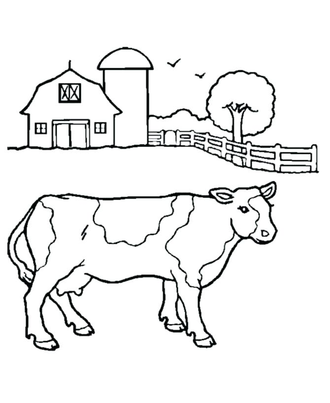 Baby Cow Drawing