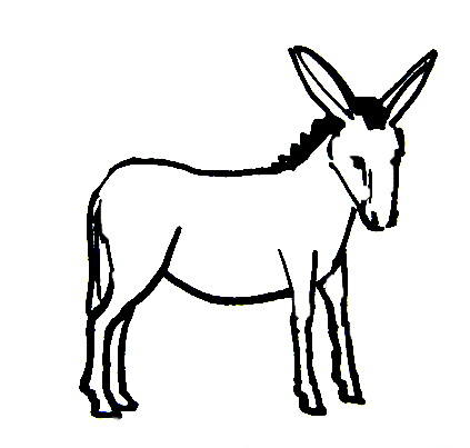 423x403 Donkey Coloring Pages