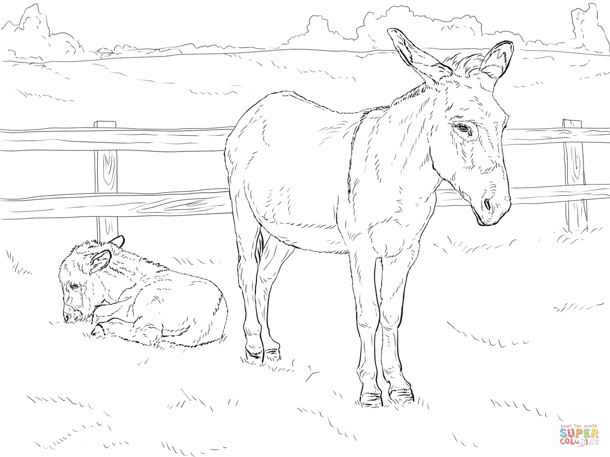 1199x899 Donkey With Baby Coloring Page Free Printable Pages