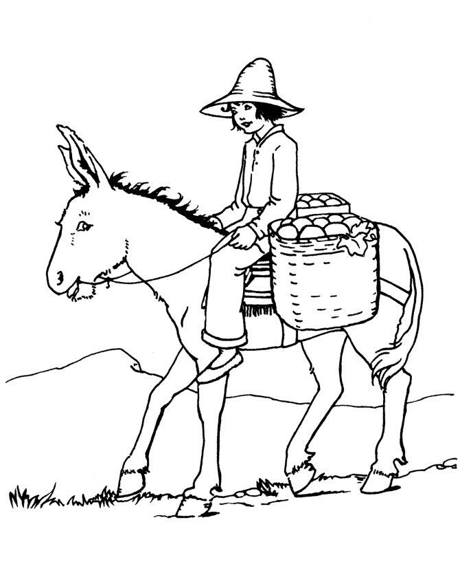670x820 57 Best Donkey Love Images On Pinterest Donkeys And Farm