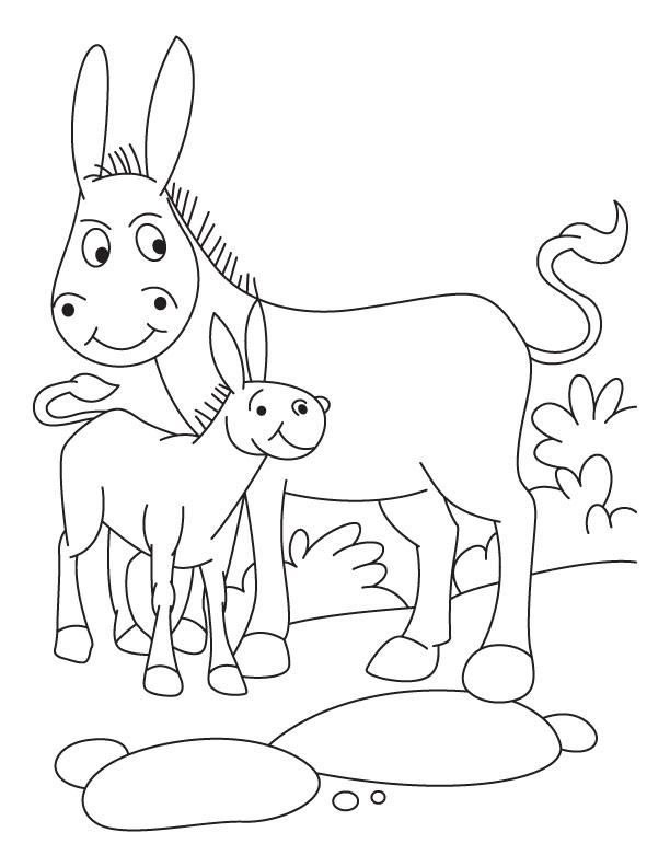 612x792 Baby Donkeys Coloring Pages