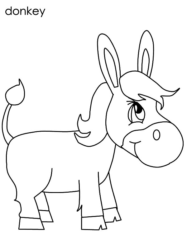 Baby Donkey Drawing at GetDrawings.com | Free for personal use Baby ...